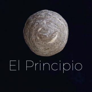 Serie EL PRINCIPIO